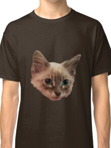 Siemese Kitten  Classic T-Shirt