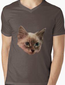 Siemese Kitten  Mens V-Neck T-Shirt