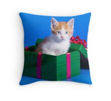 Kitten In Gift Box Throw Pillow