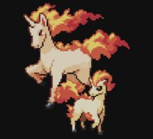 Ponyta Evolutions  by Flaaffy