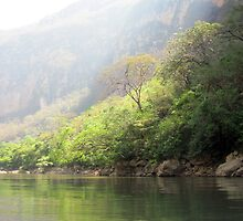 Sumidero Canyon by samanthaschultz