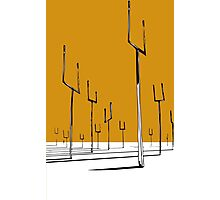 Muse - Origin of Symmetry Photographic Print