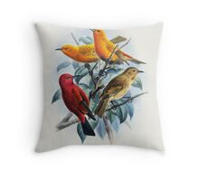 Laysan Honeycreeper Vintage Artwork Throw Pillow