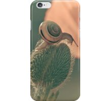 The poppy and the snail iPhone Case/Skin