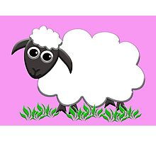 White Wooly Lamb with Pink Photographic Print