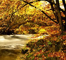 River Brathay, Clappersgate, Cumbria, England by DBigwood
