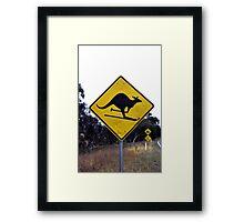 Skiing kangaroo Framed Print