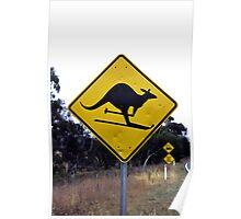 Skiing kangaroo Poster