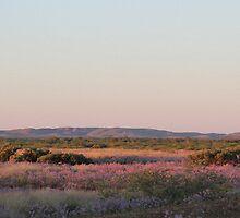 Dawn on the Pilbara hills by Greta van der Rol