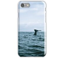 Whale Tail  iPhone Case/Skin