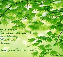 Blessings and Lessons by crosscreations