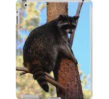 The View Up Here iPad Case/Skin