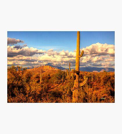Arizona Landscape Photographic Print