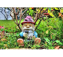 Funny garden gnome HDR Photographic Print