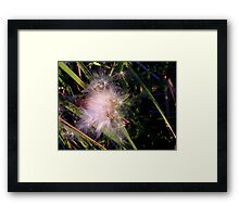 Will Flower Framed Print