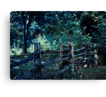 Forest Post Canvas Print
