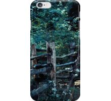 Forest Post iPhone Case/Skin