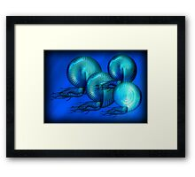 ©DA Nautilus Fractal IAB Framed Print
