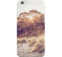 2014 Calendar 1 iPhone Case/Skin