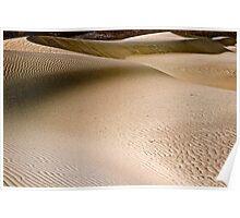 Desert Dune Poster