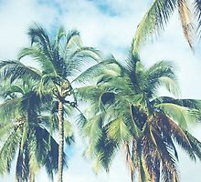 Palm Trees 2 by melaniewoon