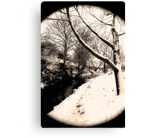 Snow Scene #6 Canvas Print