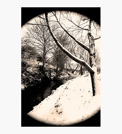 Snow Scene #6 Photographic Print