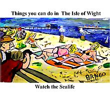 Sayings 'Things you can see in the Isle of Wight - Sealife' Photographic Print