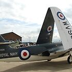 Hawker Sea Hawk by peely20