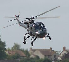 Westland Wasp by peely20