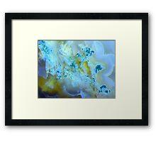 Florets (Moss Agate) Framed Print
