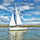 Summer Sailing by shalisa