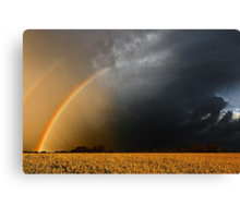 Storm Over Canolla Field  Canvas Print