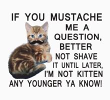 Ask The Kitten With A Mustache A Question by FireFoxxy