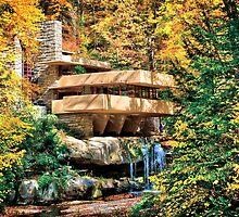 Frank Lloyd Wright Fallingwater by Steve Ivanov