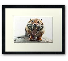 ..an angry Tiger ready to jump you...               [FEATURED] Framed Print