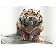 ..an angry Tiger ready to jump you...               [FEATURED] Poster