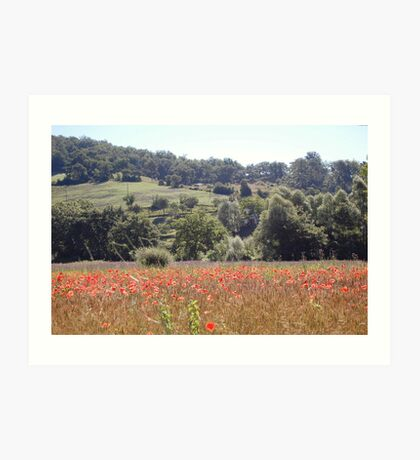 Poppy field near Lago Trasimeno. Art Print