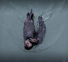 Sea Otter Kisses by JocelynVodnik