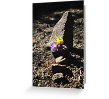 Bird Grave Greeting Card