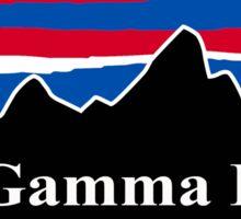 Phi Gamma Delta Red White and Blue Sticker