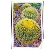 Royal Botanical Garden Poster