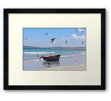 Seagulls by the sea Framed Print