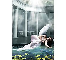 Waiting In Heaven Photographic Print