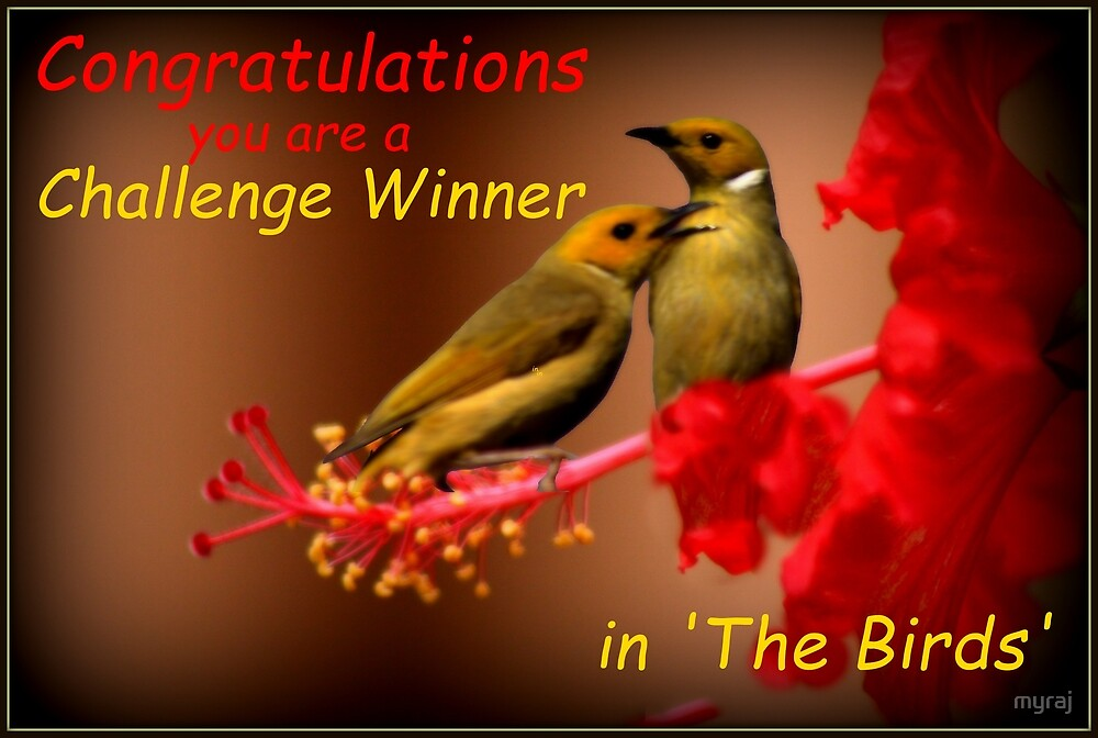 Banner Challenge by myraj