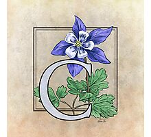 C is for Columbine - full image Photographic Print