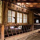 Big Old Barn by LadyEloise