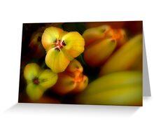 Lilies Sonatina Greeting Card