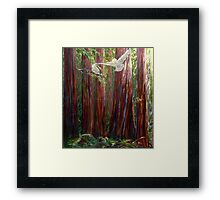OLD GROWTH AND  SNOW OWLS Framed Print