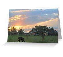 Kenyan Sunset Greeting Card